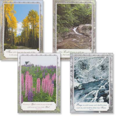 Blank Cards - Nature's Symphony - Set of 4