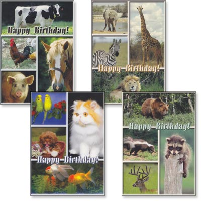 Children's Birthday Cards - Birthday Pals - Set of 4