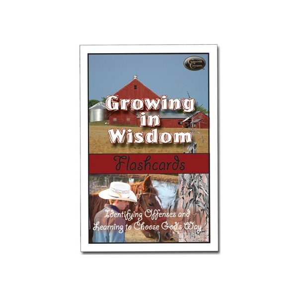 Ages 8-13: Growing in Wisdom Flashcards NEW!!!