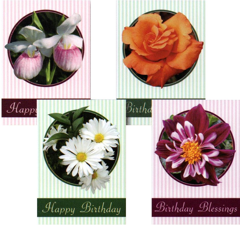 Birthday Cards - Nature's Gems - Set of 4